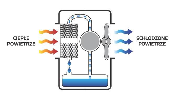 obrazek - Wynajem klimatyzatorów